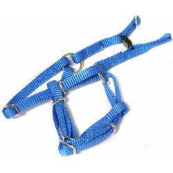 "Canac Dog Harness Blue Nylon - 3/4"" Wide"
