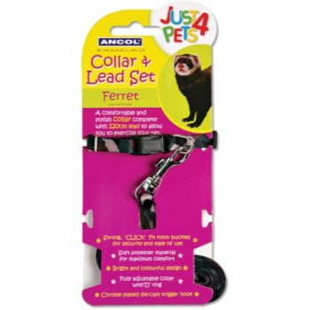 Ferret Collar & Lead Set