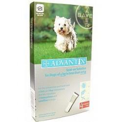 Advantix Flea 100 - Medium Dog 4-10kg