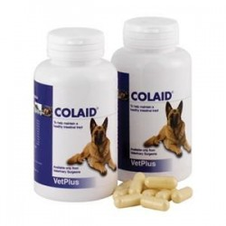Colaid Digestion Support Capsules - Pot of 90