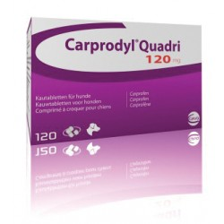 Carprodyl Quadri 120mg Tablet - per Tablet