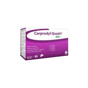 Carprodyl Quadri 50mg Tablet - per Tablet