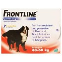 Frontline Flea Spot On for Dogs 6 pipettes of 4.02 ml - Extra Large Dog 40-60KG