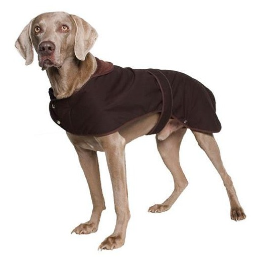 Ancol Timberwolf Wax Dog Coat - Extra Large
