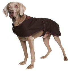 Ancol Timberwolf Wax Dog Coat - Small