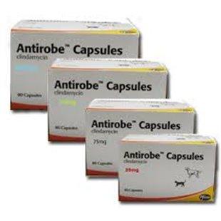 Antirobe