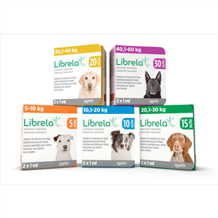 Librela for Dogs - New treatment for osteoarthritis in Dogs - Librela