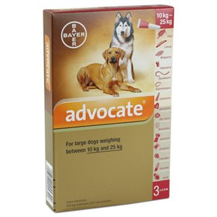 Advocate Spot on - Buy Discount Advocate for Dogs & Cats from Vet Dispense
